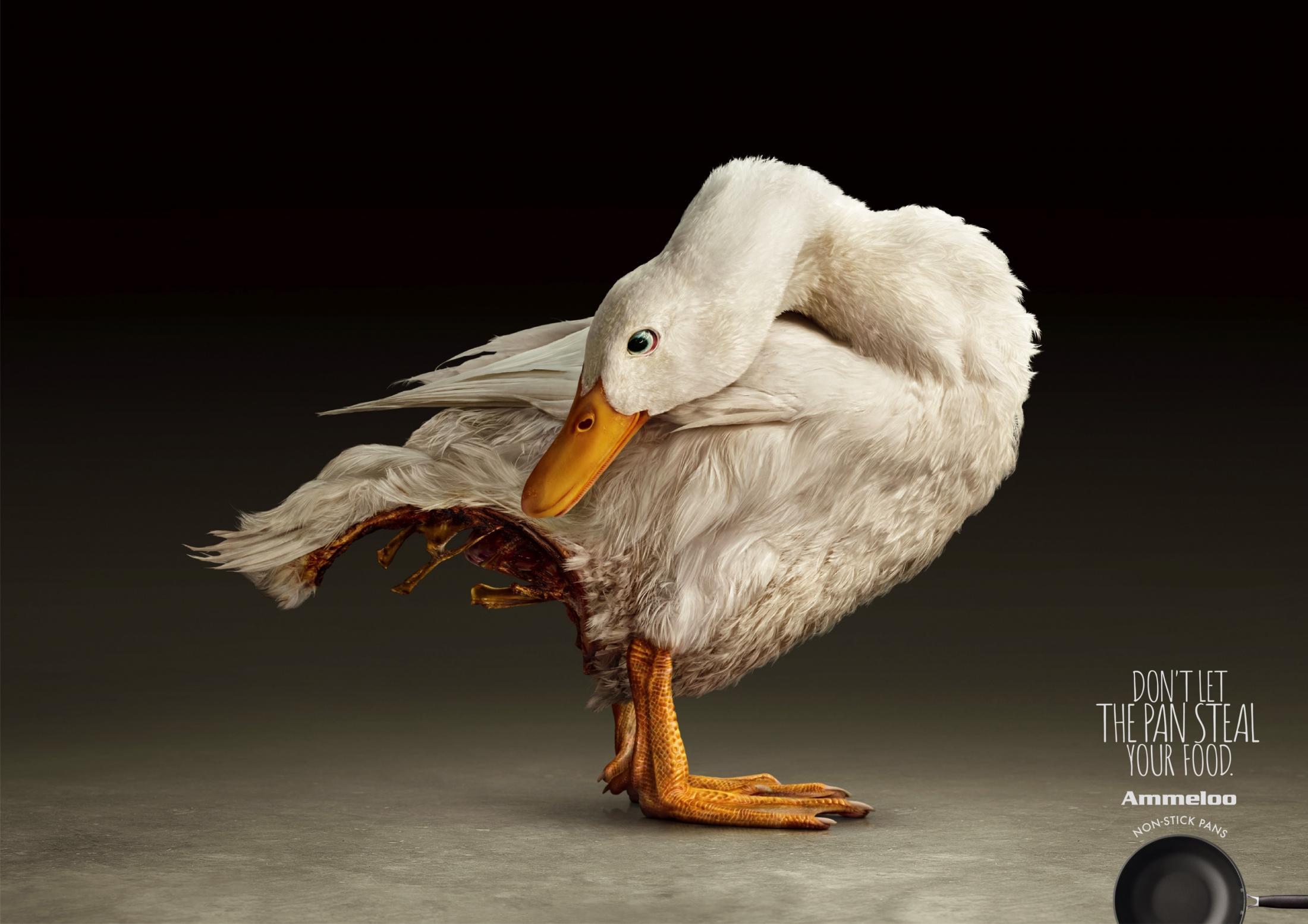 07.Ammelloo-Duck.[大嘴收纳屋].jpg