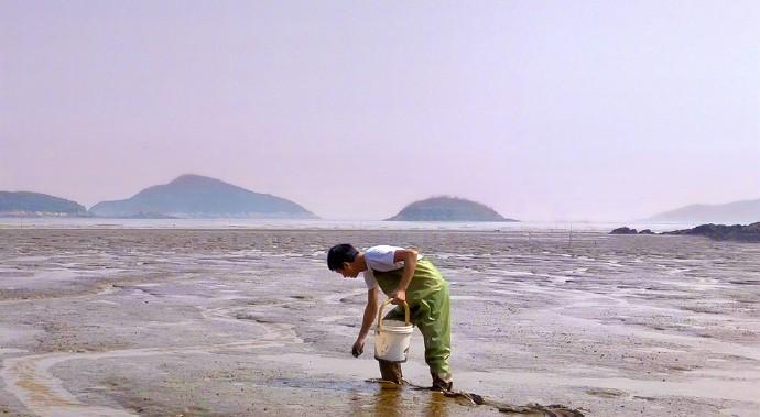 OPPO拍纪录片;青岛啤酒请企鹅拍广告…品牌作秀各出奇招   一周案例