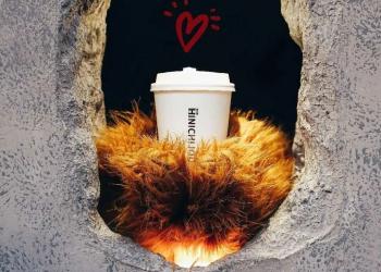 """从熊掌咖啡走红,说说产品的""""可见性"""""""
