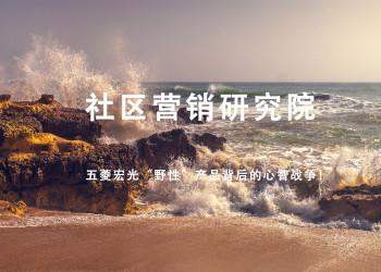 """五菱宏光""""野性""""产品背后的心智战争!"""