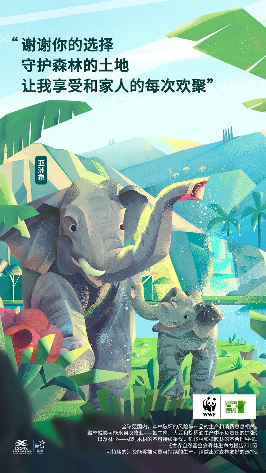WWF-亚洲象 2.jpg
