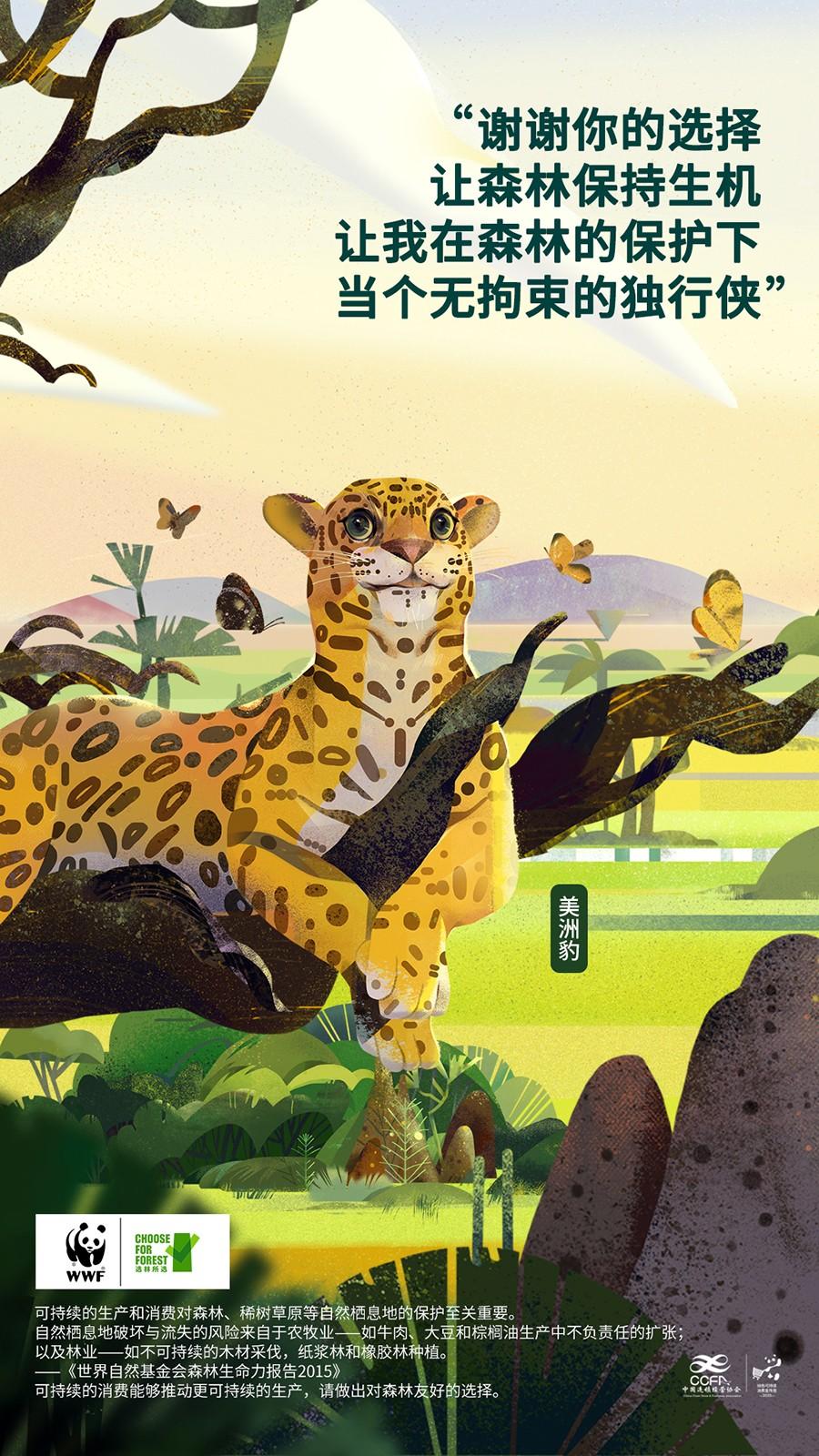 WWF-美洲豹 2.jpg
